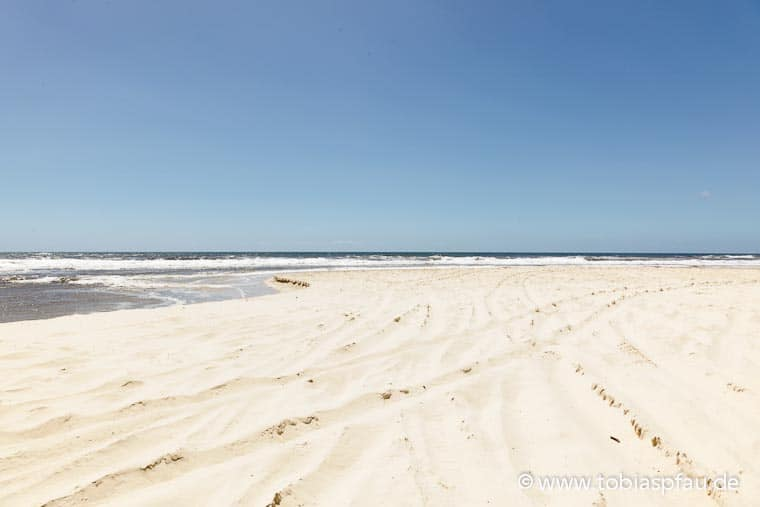wpid7138 IMG 9289Sandy Coast Fraser Island