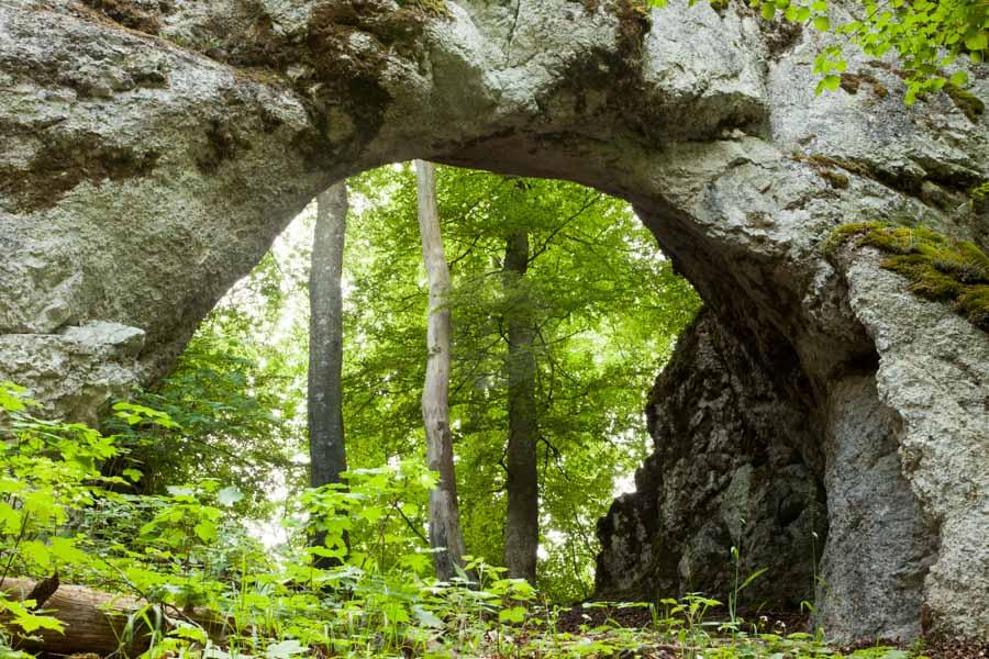 home tpfau IMG 2037 Heiden Höllentor Kelten Wald