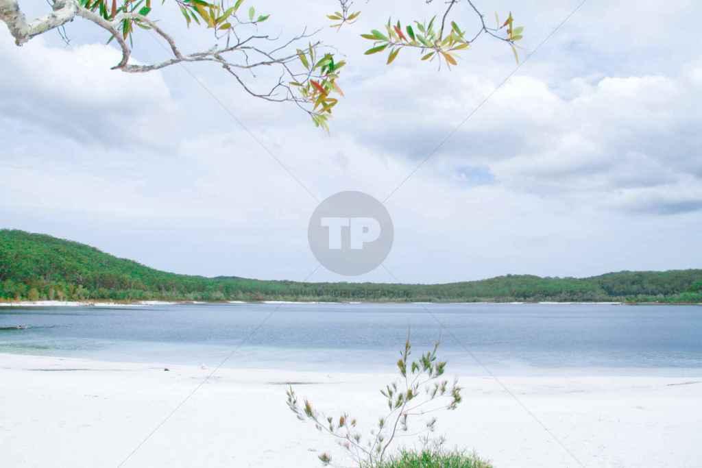 tpfau IMG 0283 Australien Fraser Island White Lake McKenzie