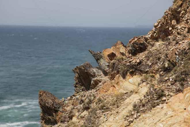 tpfau IMG 6688 Australien Ost Küste