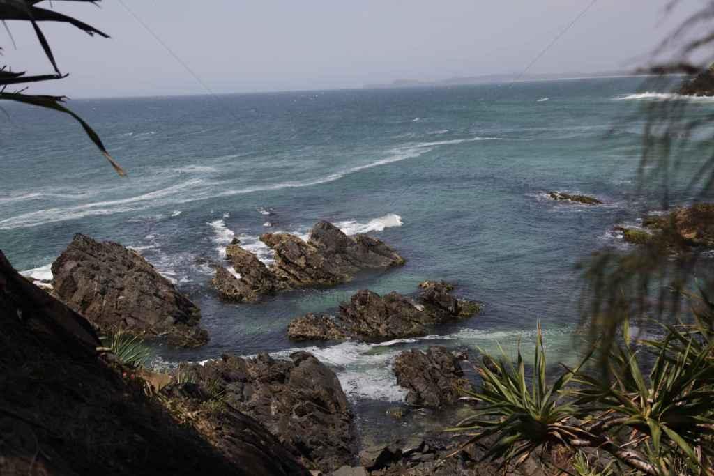 tpfau IMG 6694 Australien Ost Küste