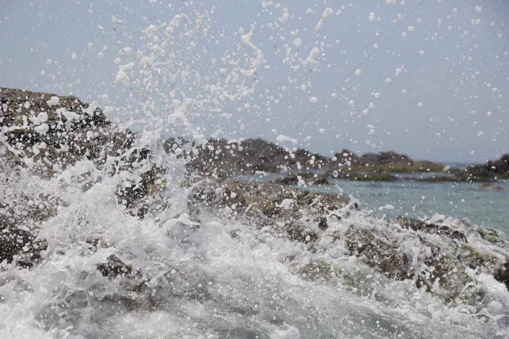 tpfau IMG 6725 Australien Ost Küste