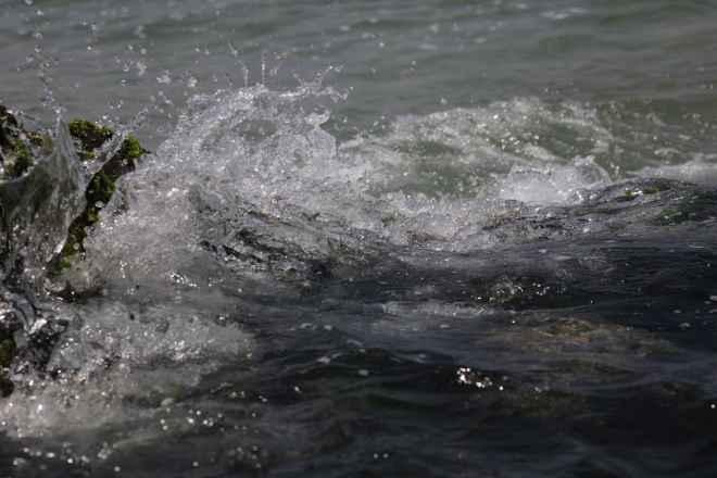 tpfau IMG 6804 Australien Ost Küste
