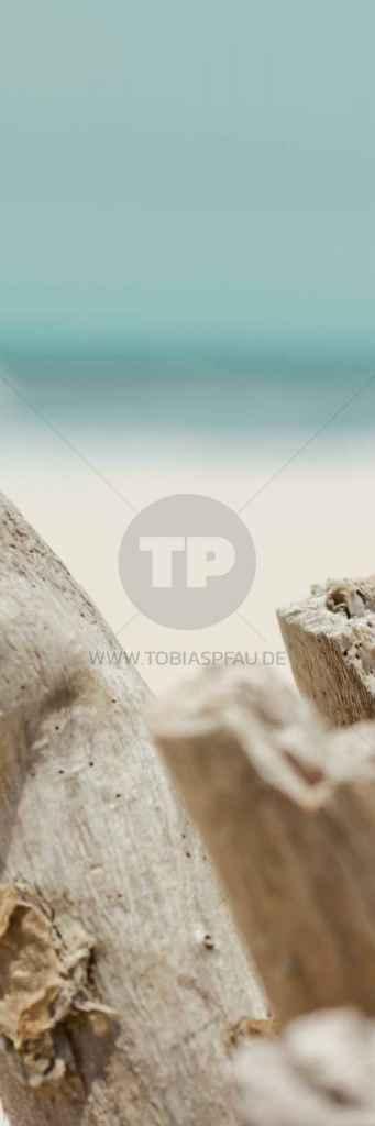 tpfau IMG 6870