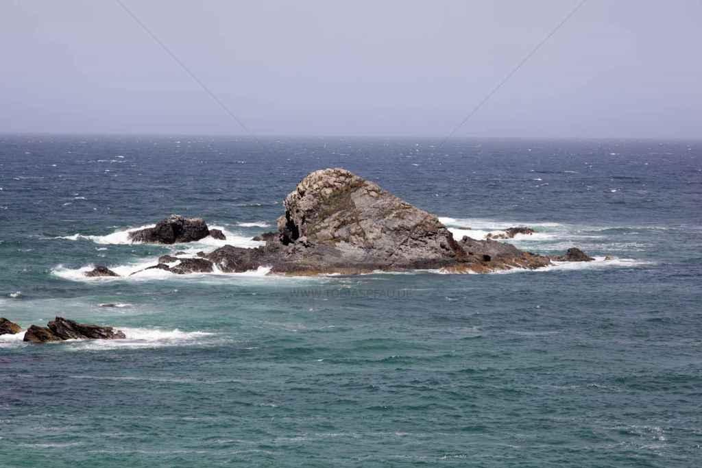 tpfau IMG 6889 Meer Australien