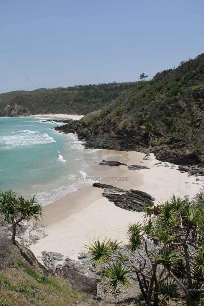 tpfau IMG 7977 Australien Ost Küste