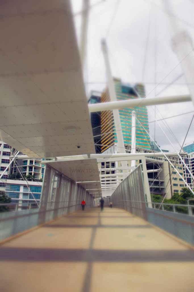 tpfau IMG 8291 Bridge to Brisbane