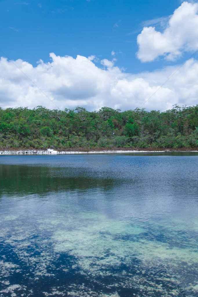 tpfau IMG 8949 fraser Island lake