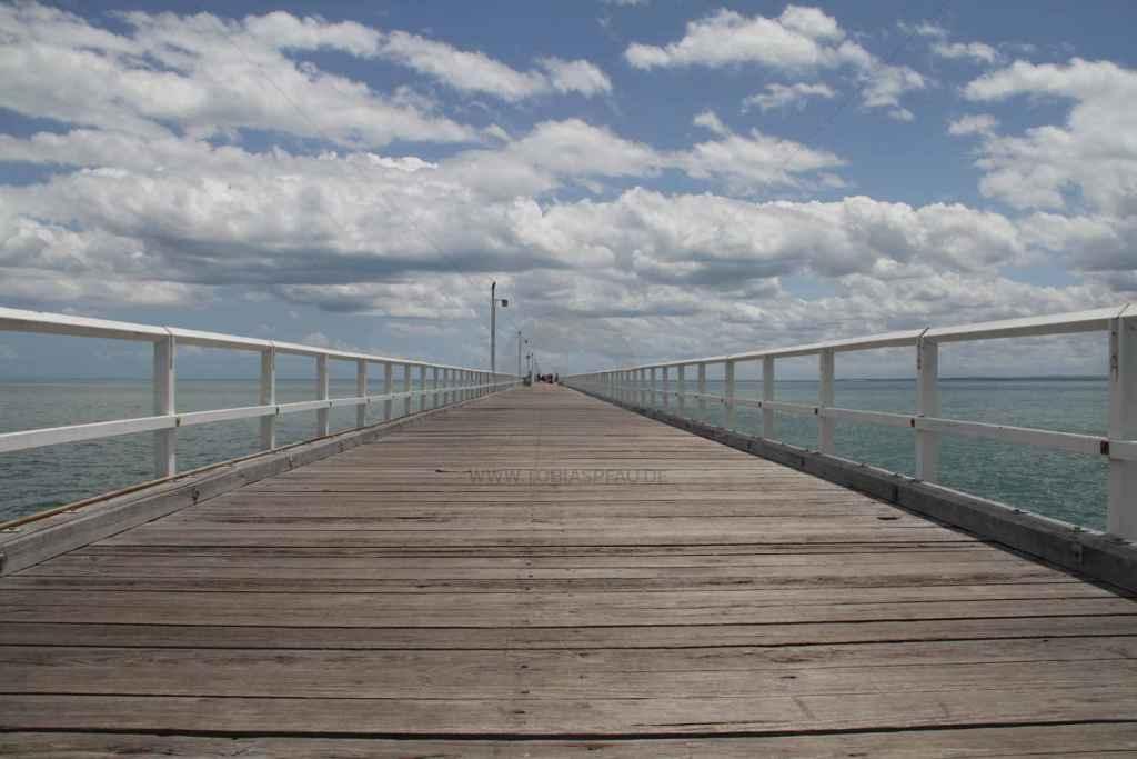 tpfau IMG 9026 Fraser Island Explorer Tours Australien
