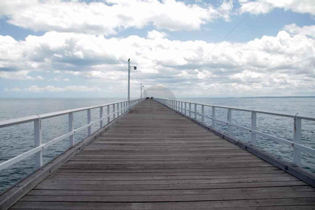 tpfau IMG 9037 Fraser Island Explorer Tours Australien
