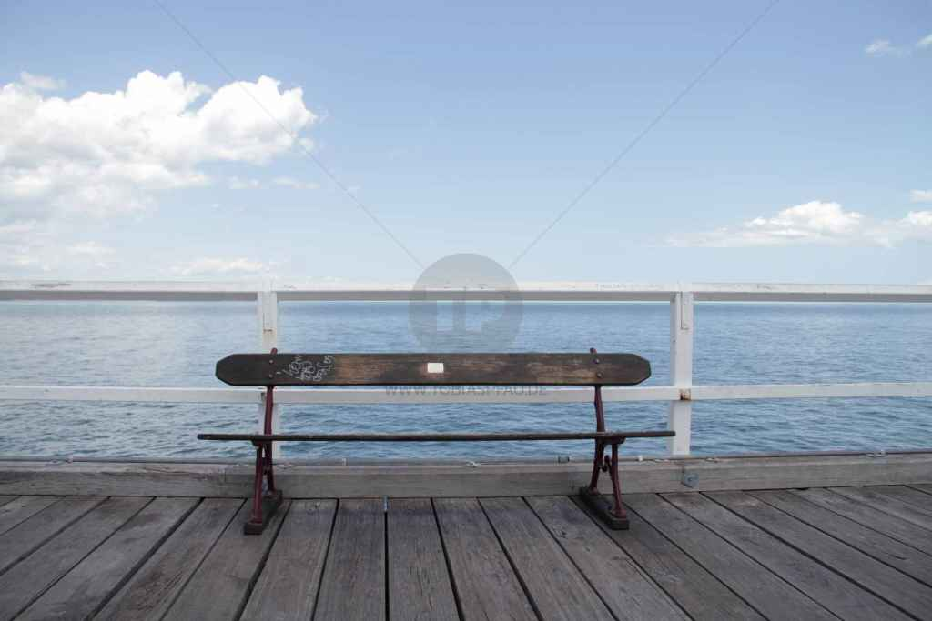 tpfau IMG 9041 Fraser Island Explorer Tours Australien