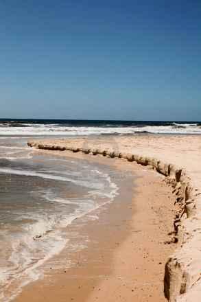 tpfau IMG 9294 n2 Eli Coast Fraser Island