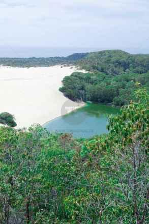 tpfau IMG 9840 Fraser Island Lake Wabby