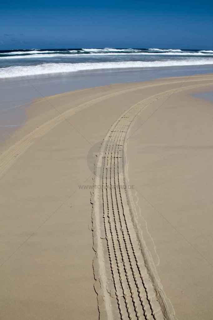 tpfau IMG 9947 Fraser Island Coast