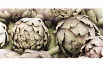 Saison Markt Gemüse