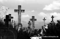 Friedhof – Steingräber / dark graveyard