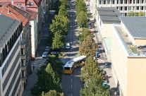 Baum – Allee in der Stadt, Verkehr