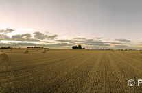 Riesen Stroh Panorama – nach der Ernte