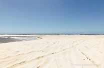 Sandy Coast – Fraser Island