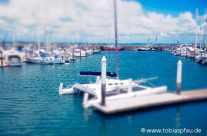 Harbor – Noosa