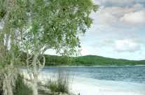 Great Sandy Island