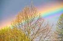 Regenbogen nach Unwetter
