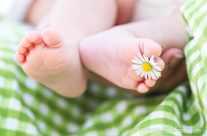 Frühling – Babyfüßchen mit Blume