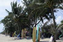 Surfbretter an tropischem Strand